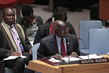 Council Discusses Situation in South Sudan 1.0