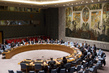 Security Council Considers Own Draft Report to Assembly