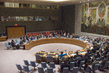 Council Reaffirms Arms Embargo on Somalia 1.0