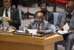 Council Discusses Situation Concerning Democratic Republic of Congo 4.2230535