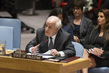 Council Considers Middle East Situation, Including Palestinian Question 0.006905941
