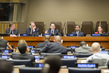 Assembly's Fourth Committee Begins Consideration of UNRWA's Work 0.44779128