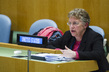 General Assembly Meeting on Outcomes of UN Conferences in Economic, Social Fields 3.2165022