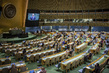 Assembly Considers Report of Human Rights Council 1.0