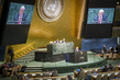 Assembly Considers Annual Report of Security Council 0.0060224724