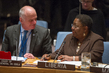 Security Council Discusses Ebola Crisis