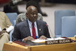 Security Council Extends South Sudan Mission