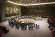 Security Council Extends Liberia Mission 1.0