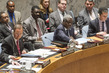 Council Debates UN-AU Partnership in Peacekeeping 0.015676323