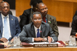 Council Debates UN-AU Partnership in Peacekeeping 4.21328
