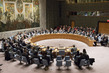 Security Council Fails to Adopt Resolution on Palestinian Statehood 0.37312582