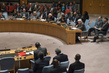 Security Council Discusses Situation in Mali 1.2284755