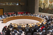 Security Council Considers Peace Consolidation in West Africa 4.2162285