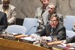 Council Considers Situation Concerning Democratic Republic of Congo 4.2162285