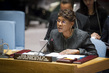 Security Council Discusses Situation in Côte d'Ivoire 0.4051509