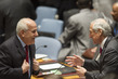 Security Council Meets on Middle East 0.522944