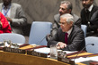 Security Council Meets on Middle East 4.2157383