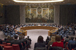 Security Council Meets on Maintenance of International Peace and Security 1.0