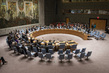 Security Council Extends CAR Sanctions 1.0