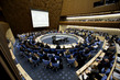 WHO Executive Board's Special Session on Ebola 4.609435