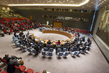 Security Council Considers Humanitarian Situation in Syria 4.2133465