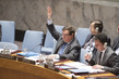 Security Council Considers Situation Concerning DRC 4.2133465
