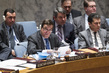 Security Council Discusses Own Working Methods