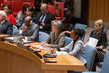 Security Council Debates Protection of Civilians in Armed Conflict 0.0072781085