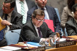 Security Council Debates Protection of Civilians in Armed Conflict 0.1578677