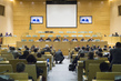 Secretary-General Addresses Meeting on Peace and Security in DRC 4.612084
