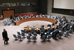 Security Council Considers Situation in Mali 1.2284755