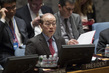 Security Council Discusses Situation in Libya 4.2075067