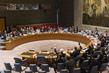 Security Council Extends Yemen Sanctions Regime 4.2033215