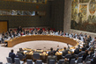 Security Council Extends Interim Force in Abyei 1.0