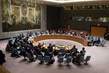 Security Council Extends Interim Force in Abyei 4.205019
