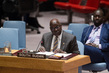Security Council Extends Interim Force in Abyei 4.2033215