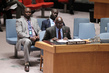 Security Council Imposes South Sudan Sanctions