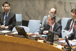 Security Council Extends Mandate of DPRK Sanctions Panel 1.0