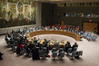 Council Extends Libya Mission Until End of March