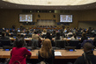 Information Meeting on World Education Forum 2015 4.6077724