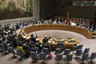 Security Council Authorizes Increase of MINUSCA Personnel 4.199466