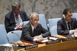 Security Council Considers Situation in Syria 4.199398
