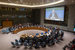 Council Debates Persecution of Ethnic, Religious Minorities in Middle East 1.0
