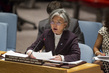 Security Council Discusses Threats Caused by Boko Haram 4.199466