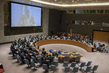 Security Council Discusses Threats Caused by Boko Haram
