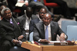 Security Council Considers Situation in Mali 1.2172103