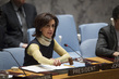 Security Council Considers Situation in Mali 1.2047257