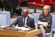 Security Council Considers Situation in Central African Republic 4.2019196