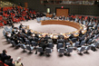 Security Council Demands End to Yemen Violence, Imposes Sanctions 1.0