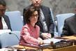 Council Debates Sexual Violence in Conflict 0.14172763